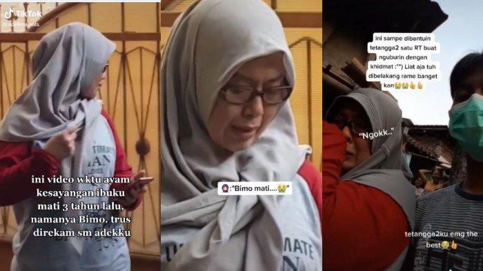 Viral di TikTok, video seorang ibu tangisi ayam kesayangannya yang mati, sampai banyak tetangga ikut proses mengubur. Begini ceritanya.
