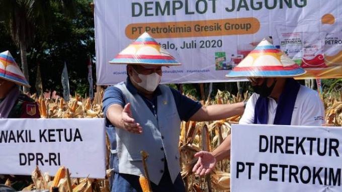Antisipasi Kelangkaan Pangan dengan Berdayakan Petani Lokal