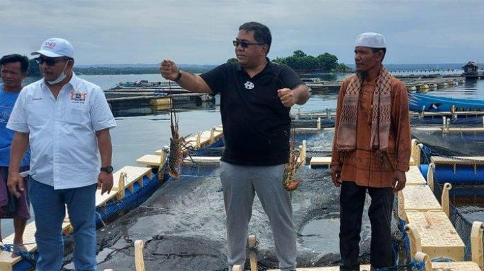 Kadin Dukung Lombok Jadi Pusat Budidaya Lobster Nasional