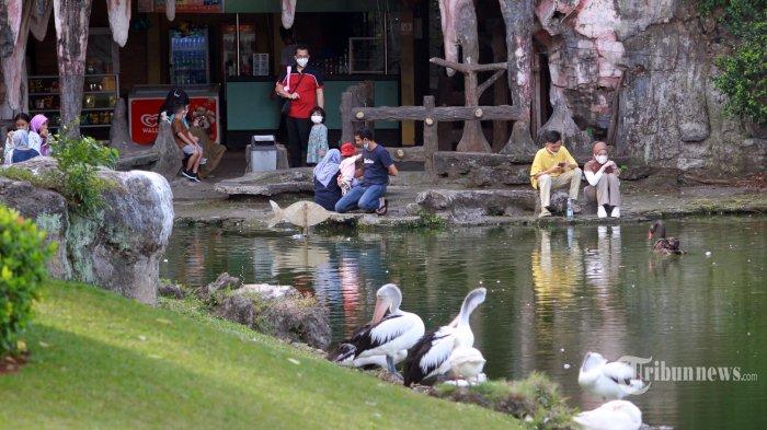 Warga ramai mengunjungi  TMII, Jakarta Timur, Sabtu,(12/9/2021). Pengelola Taman Mini Indonesia Indah atau TMII membuka dua wahana di masa Pembatasan Kegiatan Masyarakat atau PPKM Level 3 untuk wilayah Jakarta. Dua wahana yang buka itu adalah Museum Fauna Indonesia 'Komodo' Taman Reptilia dan Taman Burung. (Warta Kota/Henry Lopulalan)