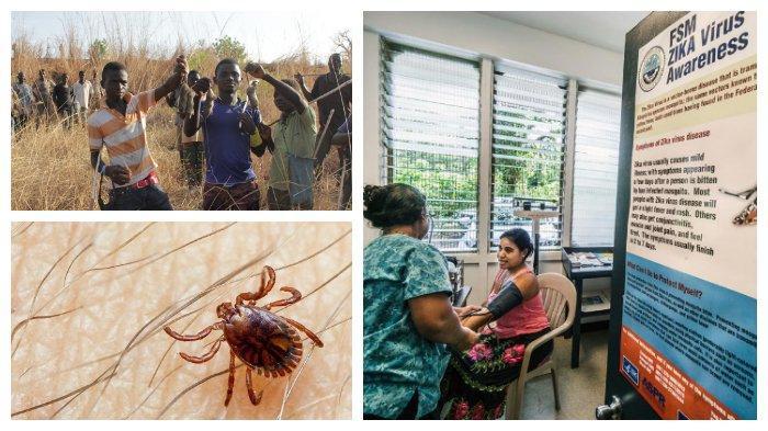WHO Tulis Daftar 9 Virus serta <a href='https://manado.tribunnews.com/tag/penyakit-berbahaya-yang-mengancam-dunia' title='PenyakitBerbahayayangMengancamDunia'>PenyakitBerbahayayangMengancamDunia</a>, dari Nipah hingga Zika