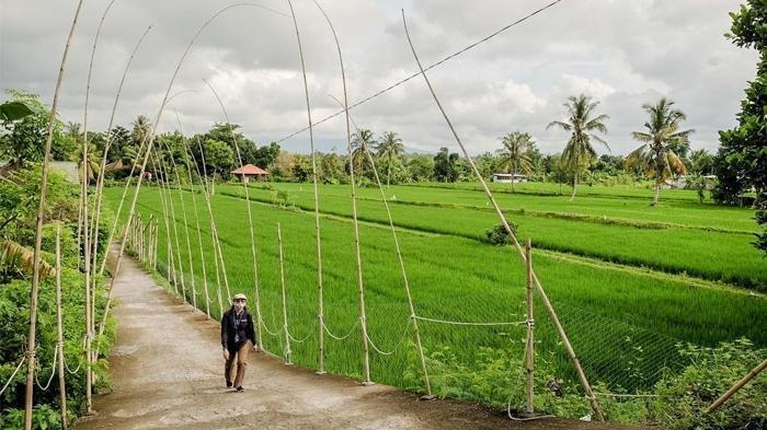 Desa Wisata Bilebante, Lombok Tengah, Nusa Tenggara Barat (NTB)