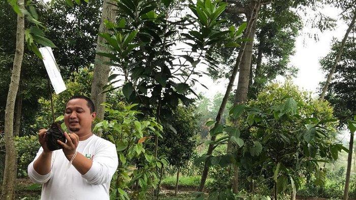 Mengembalikan Mitos 'Penunggu' Pohon Untuk Selamatkan Hutan di Puncak Bogor