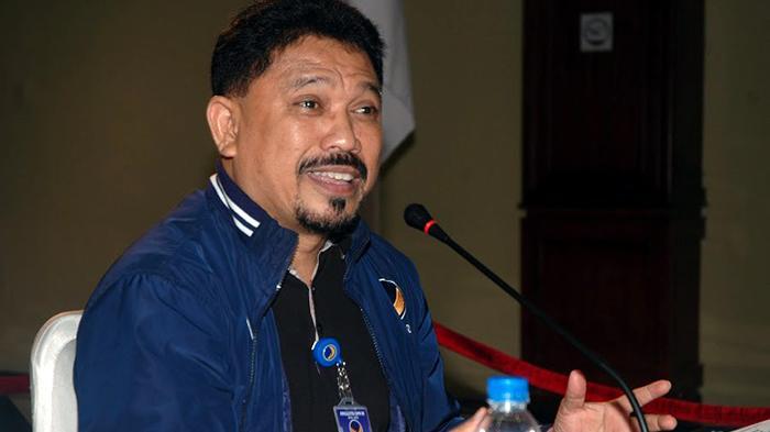 Zulfan Lindan, Anggota Komisi VI DPR RI