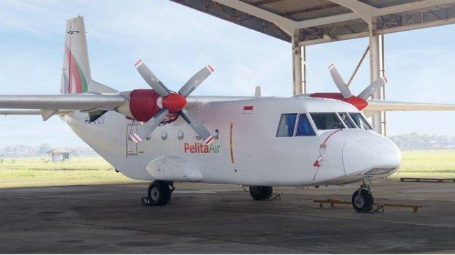 Rekam Jejak Pelita Air, Maskapai Pengganti Jika Garuda Ditutup, Lengkap dengan Profilnya