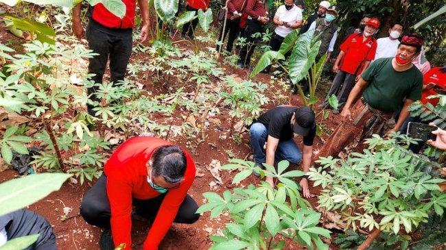 PDIP Dorong Alih Fungsi Hutan Dibuat Tak Murah dan Tak Mudah
