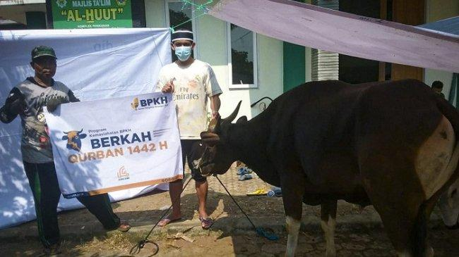 BPKH Gandeng Laznas BSMU Salurkan Hewan Kurban 1.000 Ekor Sapi ke Pelosok Negeri