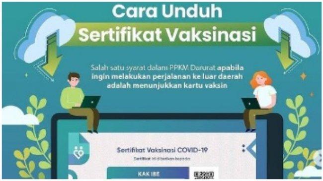 CARA Cek dan Unduh Sertifikat Vaksinasi Covid-19, Akses Laman pedulilindungi.id