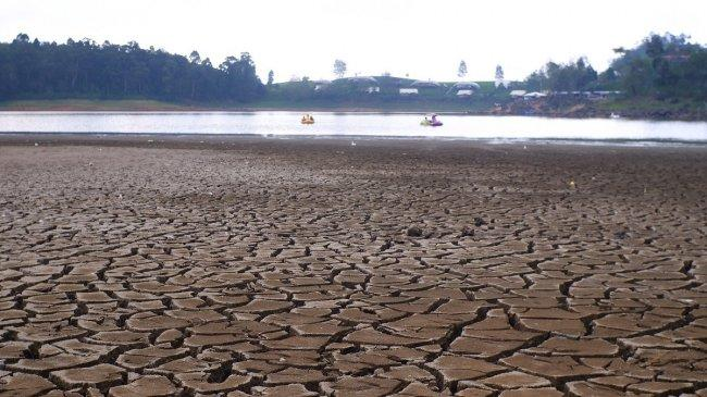 Mengenal Iklim Tropis, Pengertian, Ciri-ciri, dan Persebaran Daerah Iklim Tropis