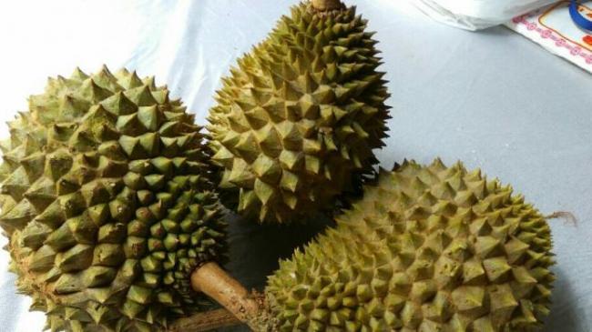 Sumbangan 450 Durian Mengalir untuk Korban Gempa Pidie Jaya