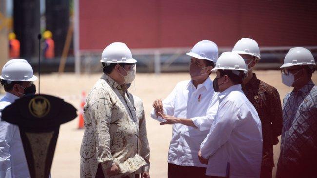 Menko Perekonomian Sebut Pembangunan Smelter Freeport Gresik Jadi Sejarah Indonesia