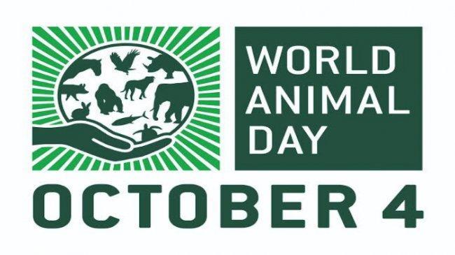 Hari Binatang Sedunia 4 Oktober 2021, Ini Sejarah dan Kumpulan Ucapan World Animal Day