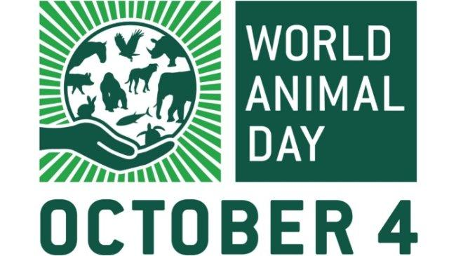 Kumpulan Ucapan Hari Hewan Sedunia 4 Oktober, Bisa Dijadikan Caption di Media Sosial