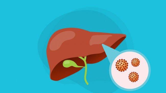 Mengenal Hepatitis B , Pemicu hingga Cara Penyembuhannya