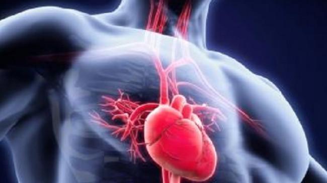 Mengenal Infeksi pada Jantung, Rentan Menyerang Individu dengan Kondisi Tertentu