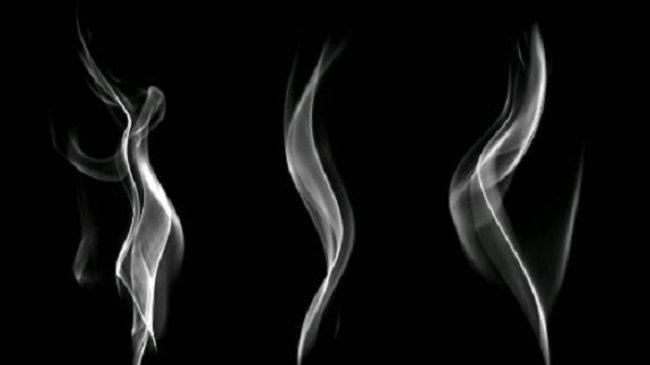 Hasil Penelitian, Nikotin Bukan Pemicu Gingivitis