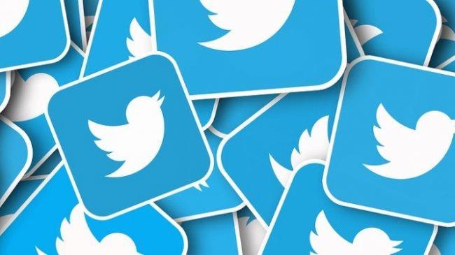 Akun Twitter Perwakilan Republik AS Diblokir setelah Sebut Covid-19 Tak Berbahaya bagi Orang Kurus