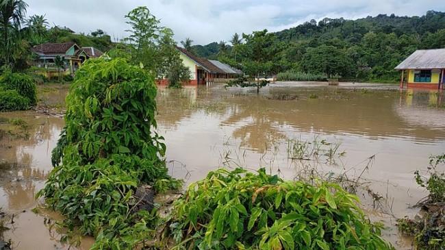 BNPB Dorong BPBD Tingkatkan Kesiapsiagaan Minimalkan Dampak Bencana