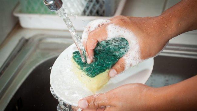 Bisa jadi Sarang Bakteri, Ini 4 Langkah Bersihkan Spons Cuci Piring