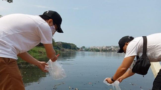 30.000 Ekor Bibit Ikan Nila Ditebar di Taman Waduk Pluit dan Pondok Kelapa
