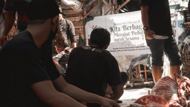 679 Komunitas di 82 Kabupaten dan Kota Dilibatkan dalam Program Tebar Hewan Kurban