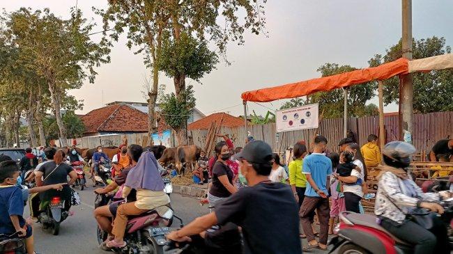 Kurang Minat Pembeli Hewan Kurban, Sapi dan Kambing Hanya Jadi Bahan Tontonan Warga
