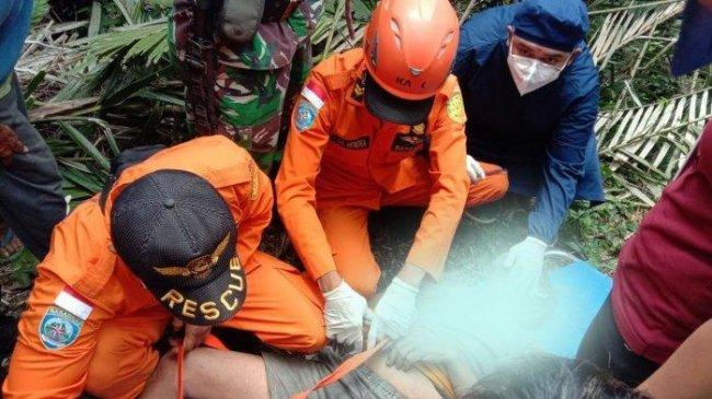 Nyoman Sumatra Meninggal Dunia Saat Berada di Atas Pohon Kelapa Setinggi 30 Meter, Begini Ceritanya