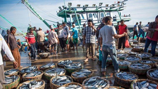 Menteri Trenggono: Pemanfaatan Potensi Perikanan di Perairan Indonesia Harus Dilakukan Terukur