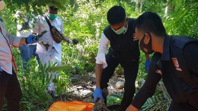Misteri Kerangka Manusia di Bireuen, Ditemukan Warga saat Cari Kayu Bakar, Ini Penjelasan Polisi