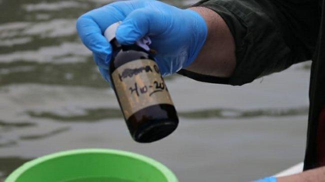 Peneliti BRIN Ungkap Limbah Sumber Paracetamol di Teluk Jakarta, Harus Diteliti Lebih Lanjut