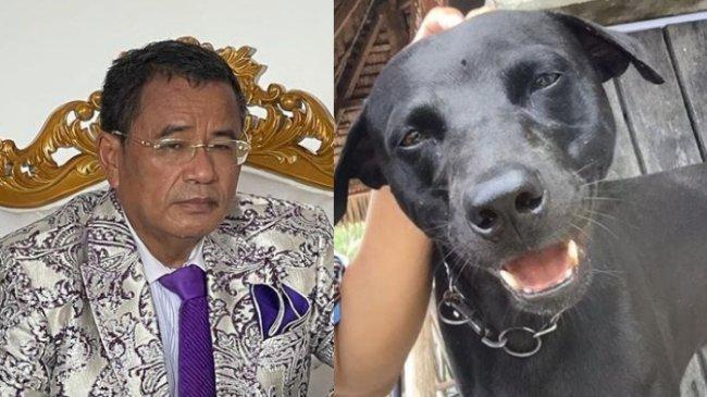 Hotman Paris Kecam Kasus Penganiaan Anjing Canon oleh Oknum Aparat: Sangat Menjijikkan!