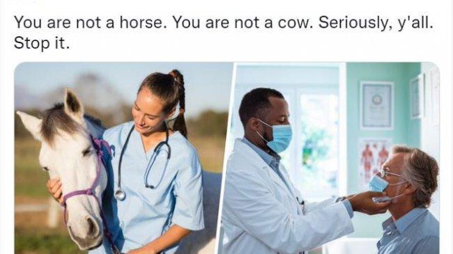 FDA AS Keluarkan Peringatan Penggunaan Ivermectin untuk Covid-19: Kalian Bukan Kuda, Bukan Sapi