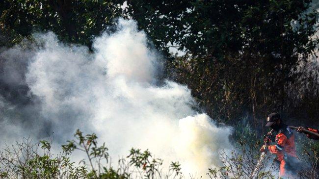 Satgas Gabungan Berhasil Padamkan Lahan Terbakar Seluas 3 Ha di Ogan Ilir Sumsel