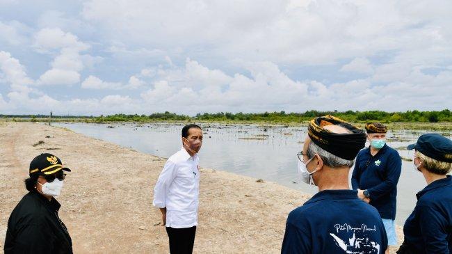 Indonesia Menuju COP26, Komunitas Peduli Krisis Iklim Ajak Jokowi Bersama Cegah Darurat Emisi