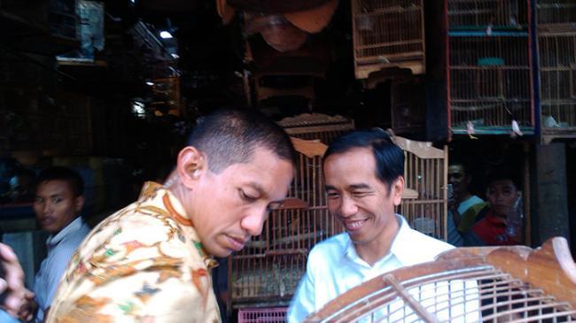 Burung yang Dibeli Jokowi Akan Dilepas di Istana Jakarta dan Bogor