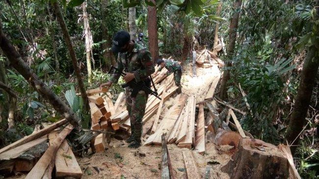 Pemerintah Diminta Tegas Hadapi Kampanye Negatif LSM Asing Terkait Pengelolaan Hutan Lestari