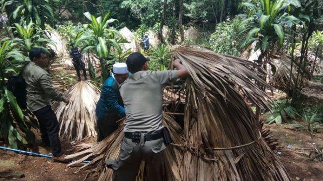Ratusan Gubuk Diduga Tempat Muda-mudi Mesum Dibongkar