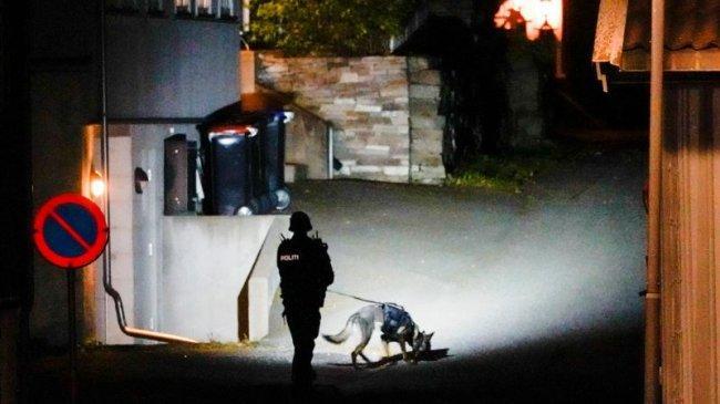 Pria di Norwegia Serang Warga dengan Busur dan Anak Panah, 5 Orang Tewas dan 2 Terluka