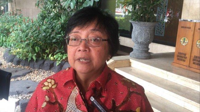 Menteri Lingkungan Hidup: Beban Proyek Reklamasi Kini Berada di Pundak Pemprov Jakarta