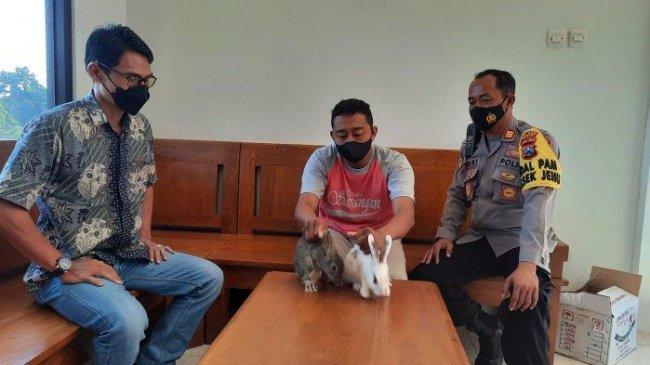 Bermodal Kelinci, Pria Ini Perdayai Puluhan Korban hingga Raup Keuntungan Miliaran Rupiah