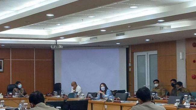 Dipecat PSI Tapi Hadiri Rapat DPRD Bahas Banjir, Viani Limardi: Saya dari Fraksi Rakyat DKI Jakarta