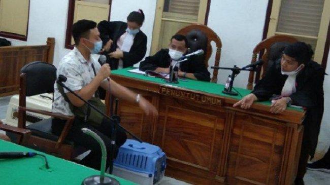 Ketika Kucing 'Ikut' Sidang Kasus Pencurian di Pengadilan Negeri Medan, Ini Pengakuan Pemiliknya