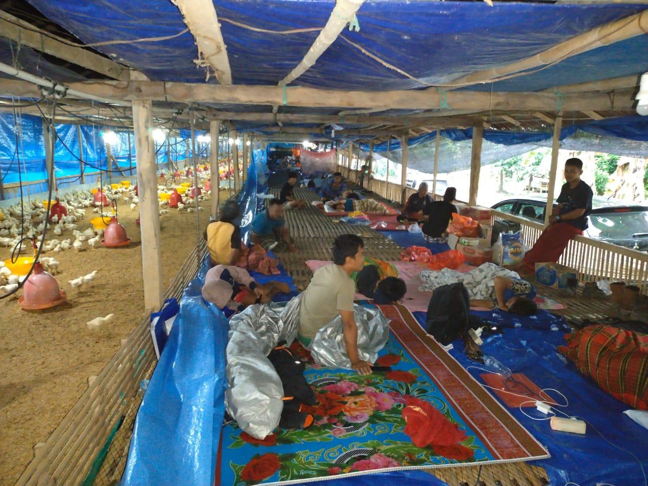 foto pengungsi di kandang ayam