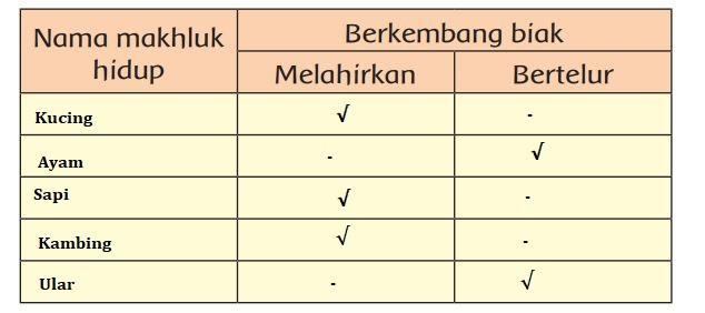 Kunci Jawaban Kelas 3 SD Tema 1 Halaman 13