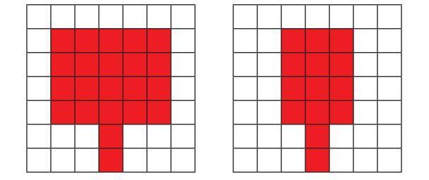 Luas Kipas Udin dan Edo. Buku Tematik Tema 6 Kelas 3 SD.