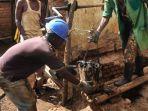 2000-hingga-3000-jenazah-korban-pembunuhan-massal-ditemukan-di-rwanda-kamis-2642018_20180427_094635.jpg