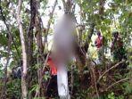6 Fakta Pengantin Baru Ditemukan Gantung Diri di Pohon, Istri Baru Tahu Suami Tewas Lewat Facebook