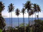 Pulau-Morotai.jpg