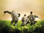Tahanan-Kabur-02.jpg