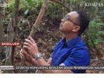 Video Penampakan Tumbuhan Bajakah Viral Jadi Obat Penyembuh Kanker Temuan Siswa SMA Palangkaraya